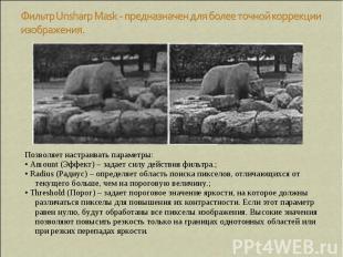 Фильтр Unsharp Mask - предназначен для более точной коррекции изображения. Позво
