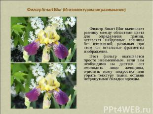 Фильтр Smart Blur (Интеллектуальное размывание) Фильтр Smart Blur вычисляет разн