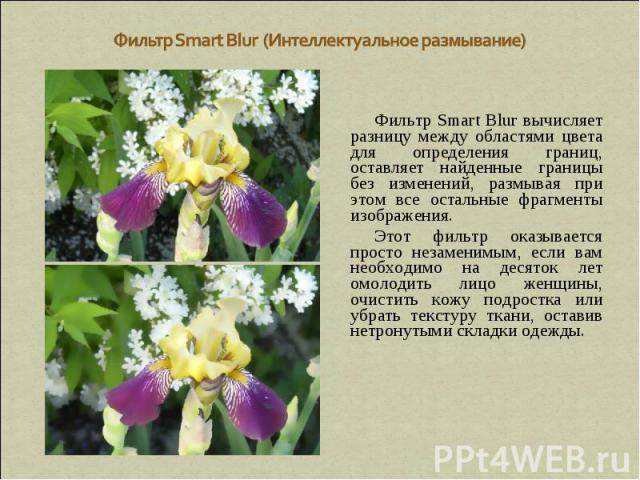 Фильтр Smart Blur (Интеллектуальное размывание) Фильтр Smart Blur вычисляет разницу между областями цвета для определения границ, оставляет найденные границы без изменений, размывая при этом все остальные фрагменты изображения. Этот фильтр оказывает…