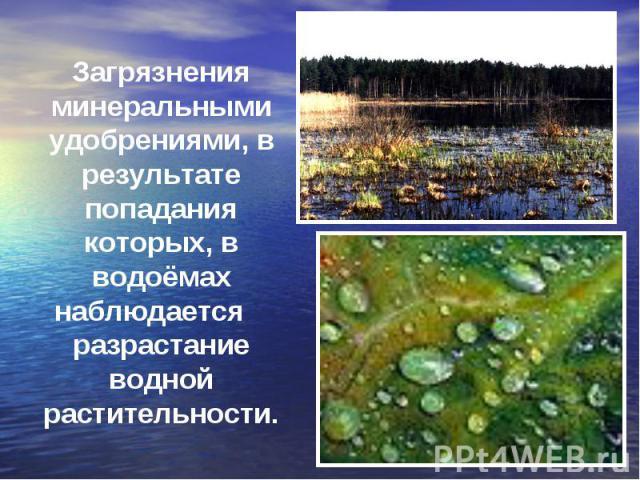 Загрязнения минеральными удобрениями, в результате попадания которых, в водоёмах наблюдается разрастание водной растительности.