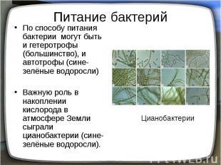 Питание бактерий По способу питания бактерии могут быть и гетеротрофы (большинст