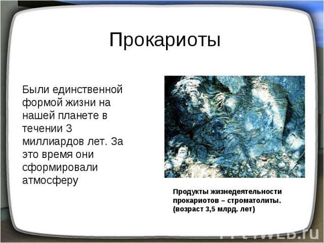 Прокариоты Были единственной формой жизни на нашей планете в течении 3 миллиардов лет. За это время они сформировали атмосферу Продукты жизнедеятельности прокариотов – строматолиты.(возраст 3,5 млрд. лет)