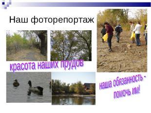 Наш фоторепортаж красота наших прудов наша обязанность - помочь им!