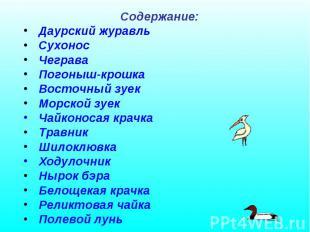Содержание: Даурский журавль Сухонос Чеграва Погоныш-крошка Восточный зуек Морск