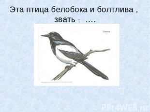 Эта птица белобока и болтлива , звать - ….
