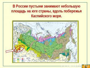 В России пустыни занимают небольшую площадь на юге страны, вдоль побережья Каспи