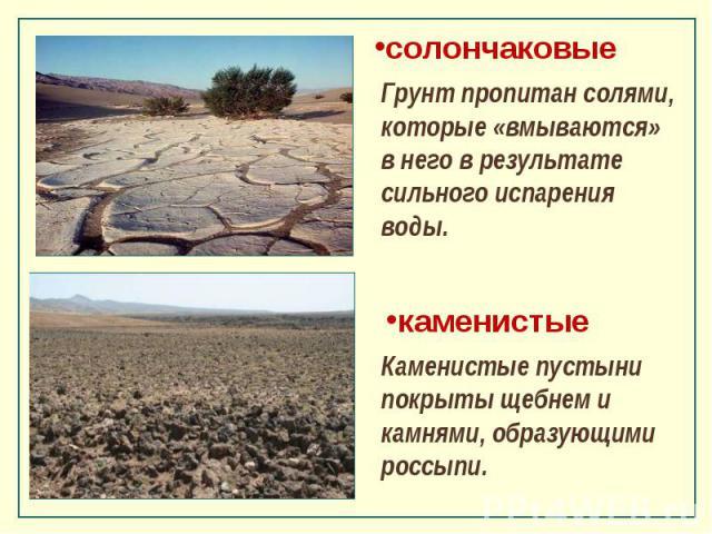солончаковые Грунт пропитан солями, которые «вмываются» в него в результате сильного испарения воды. каменистые Каменистые пустыни покрыты щебнем и камнями, образующими россыпи.