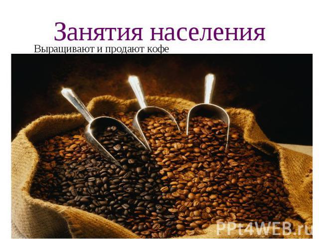 Занятия населения Выращивают и продают кофе