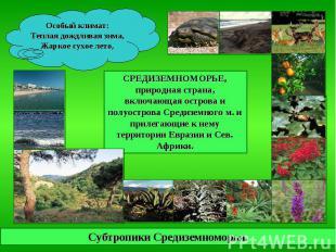 Особый климат: Теплая дождливая зима, Жаркое сухое лето, СРЕДИЗЕМНОМОРЬЕ, природ