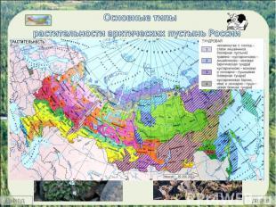 Основные типы растительности арктических пустынь России