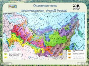 Основные типы растительности степей России