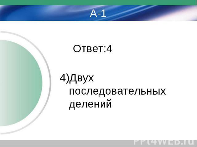 А-1 Ответ:4 4)Двух последовательных делений