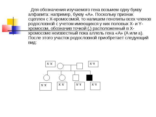 Для обозначения изучаемого гена возьмем одну букву алфавита: например, букву «А». Поскольку признак сцеплен с Х-хромосомой, то напишем генотипы всех членов родословной с учетом имеющихся у них половых Х- и Y-хромосом, обозначив точкой (.) расположен…