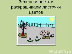 Зелёным цветом раскрашиваем листочки цветов