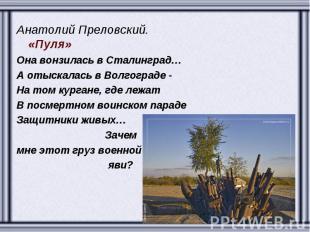 Анатолий Преловский. «Пуля» Она вонзилась в Сталинград… А отыскалась в Волгоград