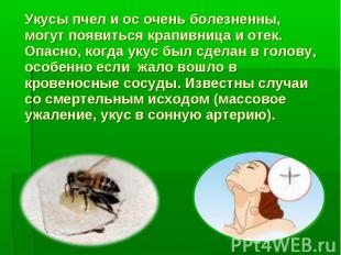 Укусы пчел и ос очень болезненны, могут появиться крапивница и отек. Опасно, ког