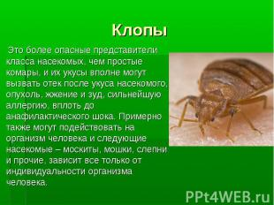 Это более опасные представители класса насекомых, чем простые комары, и их укусы