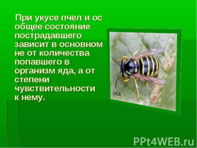 При укусе пчел и ос общее состояние пострадавшего зависит в основном не от количества попавшего в организм яда, а от степени чувствительности к нему.
