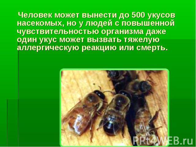 Человек может вынести до 500 укусов насекомых, но у людей с повышенной чувствительностью организма даже один укус может вызвать тяжелую аллергическую реакцию или смерть.