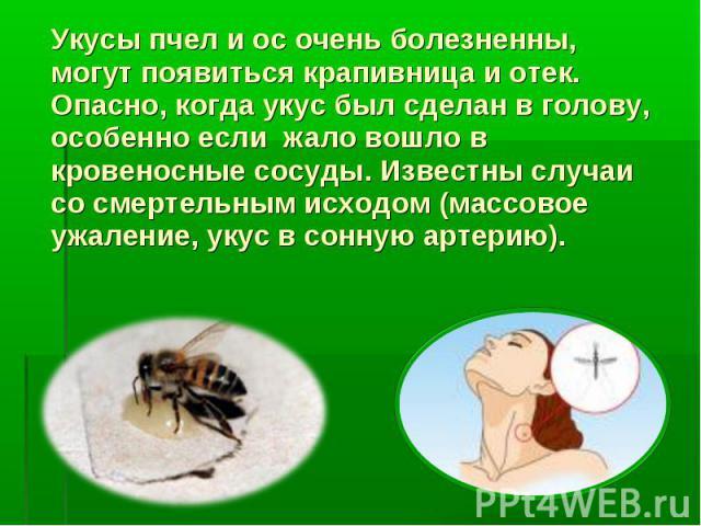 Укусы пчел и ос очень болезненны, могут появиться крапивница и отек. Опасно, когда укус был сделан в голову, особенно если жало вошло в кровеносные сосуды. Известны случаи со смертельным исходом (массовое ужаление, укус в сонную артерию).