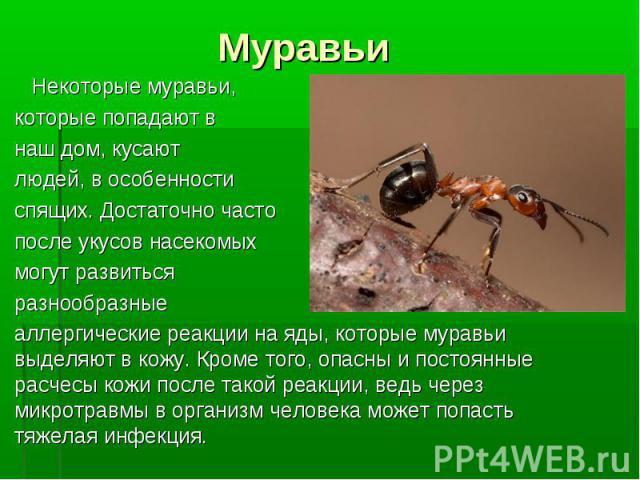 Некоторые муравьи, которые попадают в наш дом, кусают людей, в особенности спящих. Достаточно часто после укусов насекомых могут развиться разнообразные аллергические реакции на яды, которые муравьи выделяют в кожу. Кроме того, опасны и постоянные р…