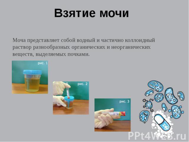 Взятие мочи Моча представляет собой водный и частично коллоидный раствор разнообразных органических и неорганических веществ, выделяемых почками.