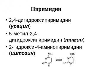 Пиримидин 2,4-дигидроксипиримидин (урацил) 5-метил-2,4-дигидроксипиримидин (тими