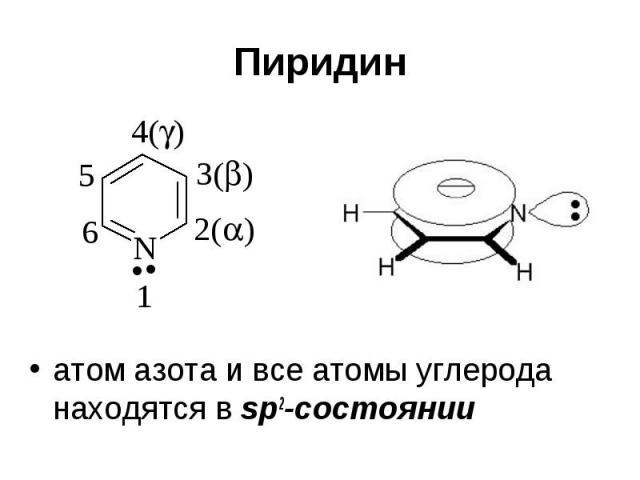 Пиридин атом азота и все атомы углерода находятся в sp2-cостоянии