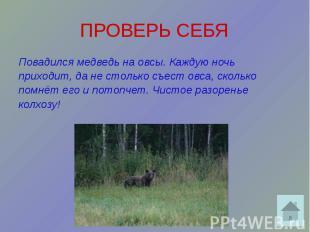 ПРОВЕРЬ СЕБЯ Повадился медведь на овсы. Каждую ночь приходит, да не столько съес
