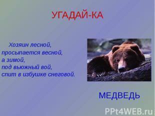 УГАДАЙ-КА Хозяин лесной, просыпается весной, а зимой, под вьюжный вой, спит в из