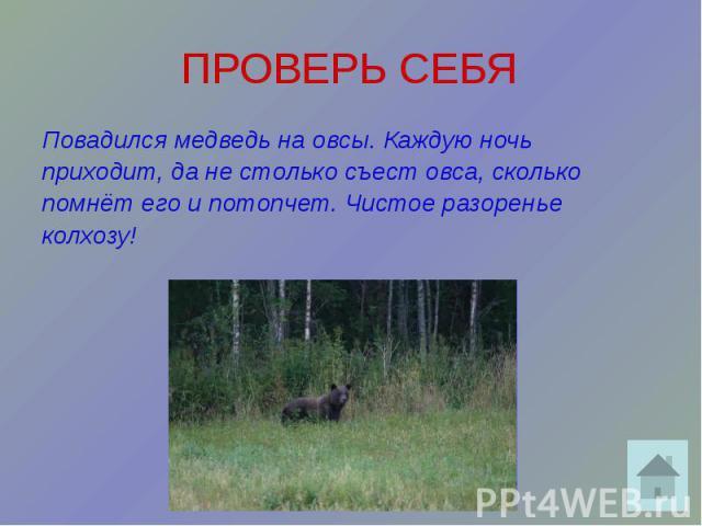 ПРОВЕРЬ СЕБЯ Повадился медведь на овсы. Каждую ночь приходит, да не столько съест овса, сколько помнёт его и потопчет. Чистое разоренье колхозу!