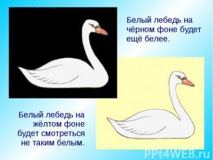 Белый лебедь на чёрном фоне будет ещё белее. Белый лебедь на жёлтом фоне будет с
