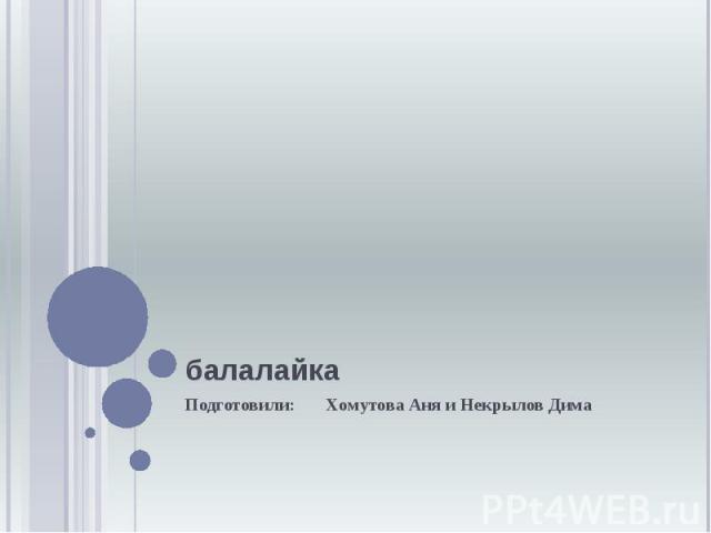 балалайка Подготовили: Хомутова Аня и Некрылов Дима