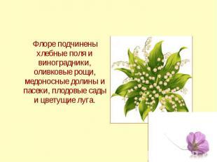 Флоре подчинены хлебные поля и виноградники, оливковые рощи, медоносные долины и