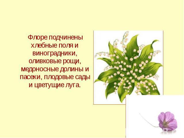 Флоре подчинены хлебные поля и виноградники, оливковые рощи, медоносные долины и пасеки, плодовые сады и цветущие луга.