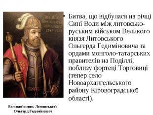 Великий князь Литовський Ольгерд Гедимінович Битва, що відбулася на річці Сині В