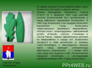 Во время Великой Отечественной войны через Всеволожск проходила «Дорога жизни».