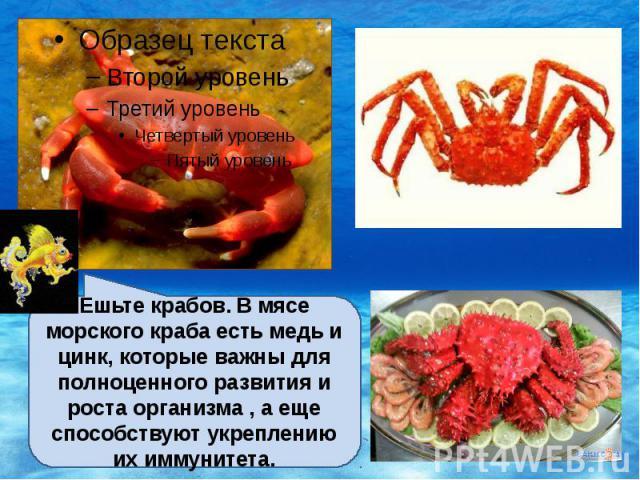 Ешьте крабов. В мясе морского краба есть медь и цинк, которые важны для полноценного развития и роста организма , а еще способствуют укреплению их иммунитета.