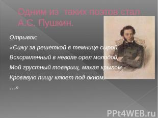Одним из таких поэтов стал А.С. Пушкин. Отрывок: «Сижу за решеткой в темнице сыр