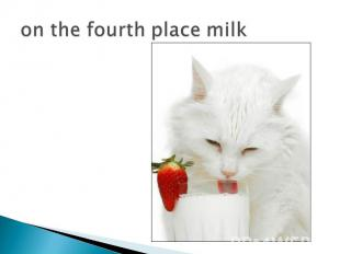 on the fourth place milk