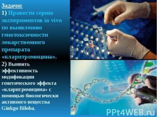 Задачи: 1) Провести серию экспериментов in vivo по выявлению генотоксичности лек