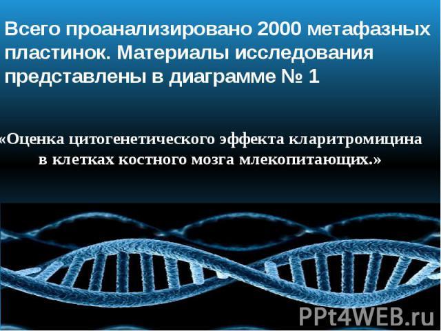 Всего проанализировано 2000 метафазных пластинок. Материалы исследования представлены в диаграмме № 1