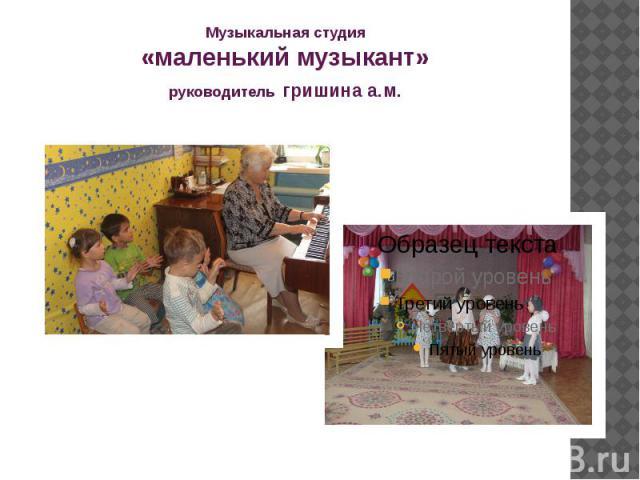 Музыкальная студия «маленький музыкант» руководитель гришина а.м.