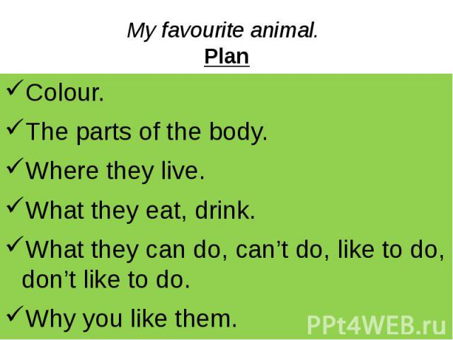 My favourite animal. Plan Colour. The parts of the body. Where they live. What they eat, drink. What they can do, can't do, like to do, don't like to do. Why you like them.
