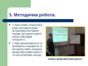 У ліцеї наявні: педагогічна рада, методична рада, інструктивно-методичні наради,