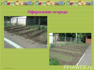 Оформление огорода
