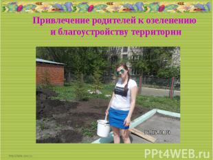 Привлечение родителей к озеленению и благоустройству территории