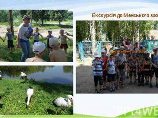 Екскурсія до Менського зоопарку Екскурсія до Менського зоопарку