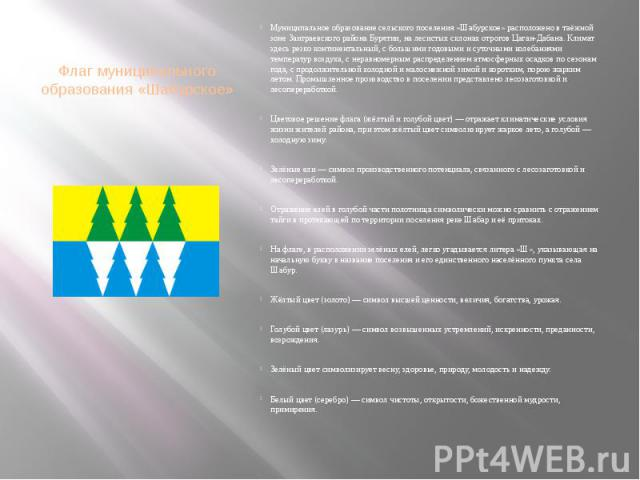 Флаг муниципального образования «Шабурское»
