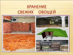Хранение Свежих овощей